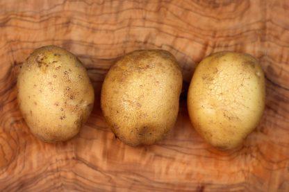 Hansa Kartoffeln